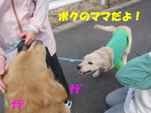 IMG_8086.jpg