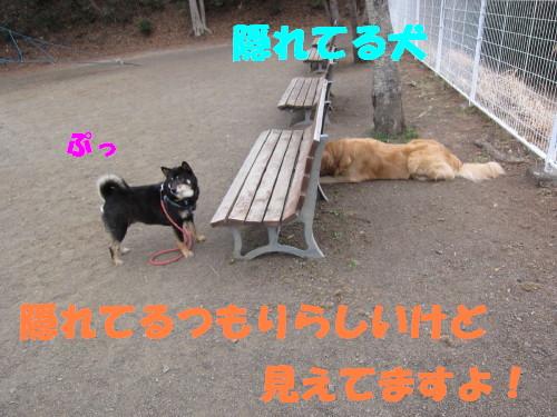 IMG_8141.jpg