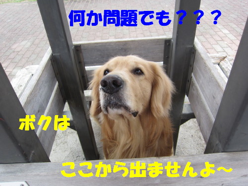 IMG_8144.jpg