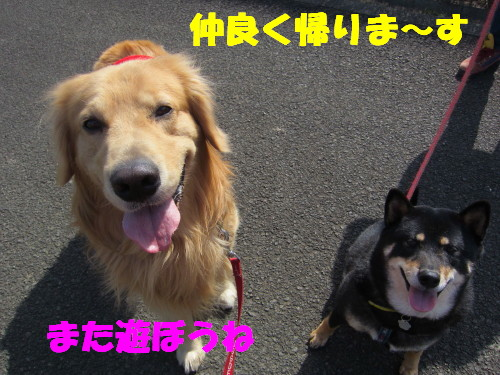 IMG_8146.jpg
