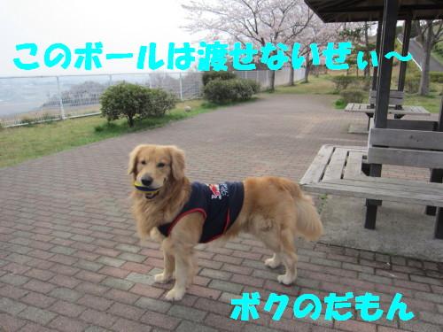 IMG_8241.jpg