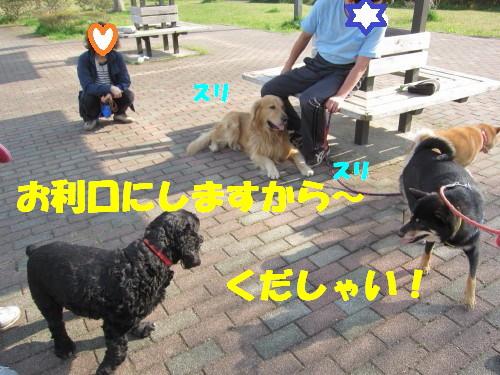 IMG_8288.jpg