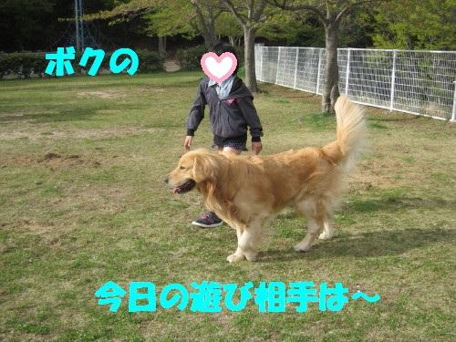 IMG_8290.jpg