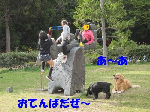 IMG_8299.jpg