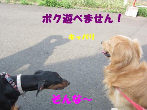 IMG_8316.jpg