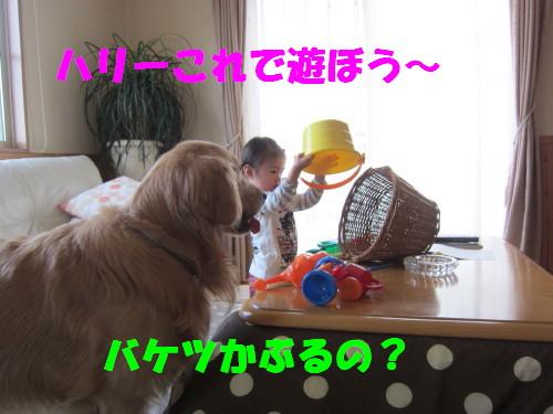 IMG_8370.jpg