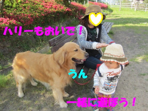 IMG_8374.jpg