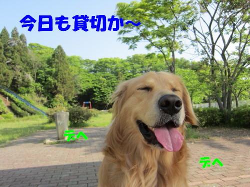 IMG_8414.jpg