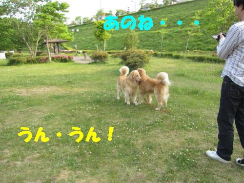 IMG_8434.jpg