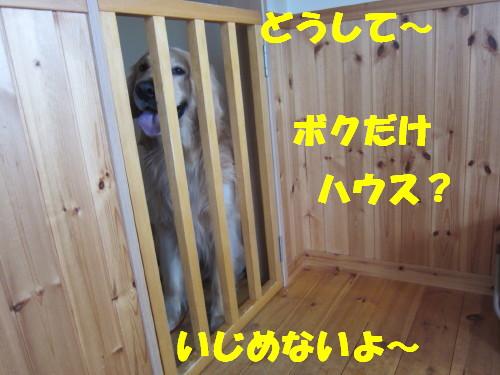 IMG_8441.jpg