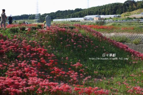 2013_09_28_9999_18 のコピー