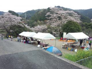 鏡村桜まつり-6