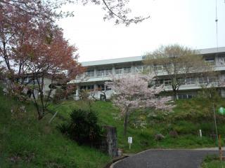 鏡村桜まつり-4