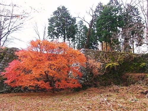 高取城石垣と紅葉