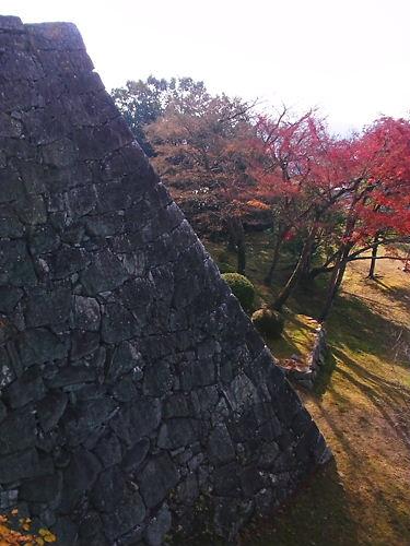 上野城石垣