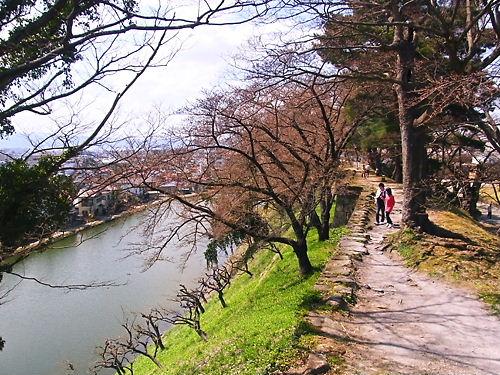 鶴ヶ城土塁