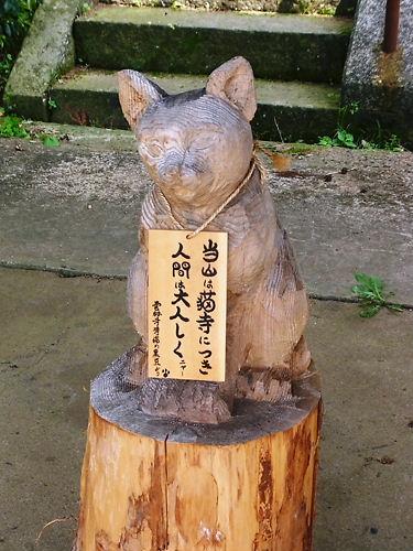 雲林寺看板猫