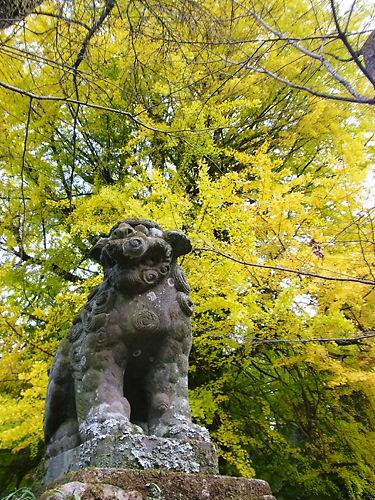 岩殿観音の狛犬