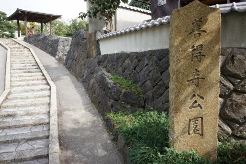2善徳寺 (1200x800)