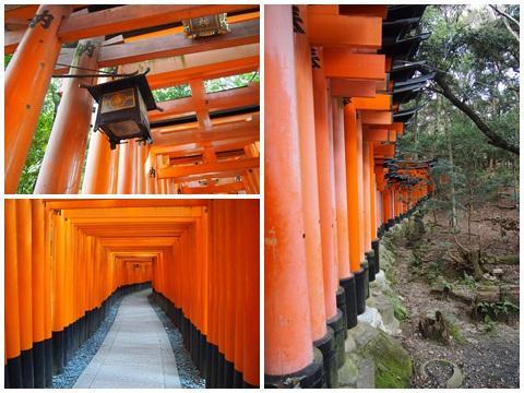 torii_convert_20130224211336.jpg