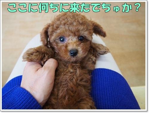 20141023_005_01.jpg