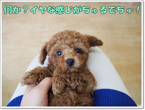 20141023_007_01.jpg
