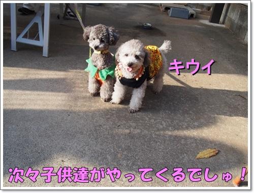 20141025_133.jpg