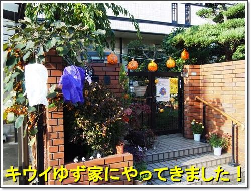 20141025_137.jpg