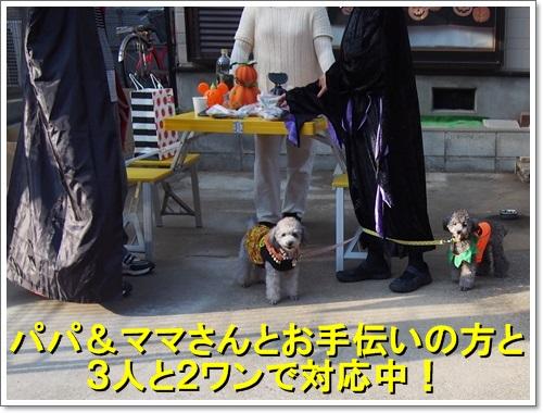 20141025_146.jpg