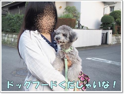20141026_232.jpg