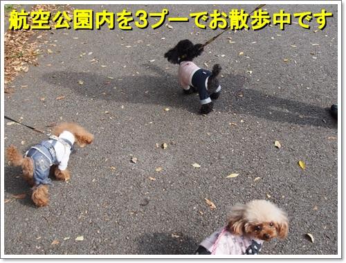 20141031_011.jpg