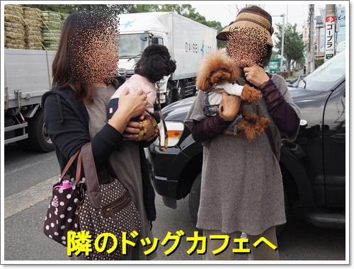 20141031_014.jpg