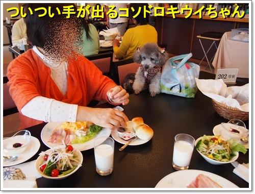 20141109_224.jpg