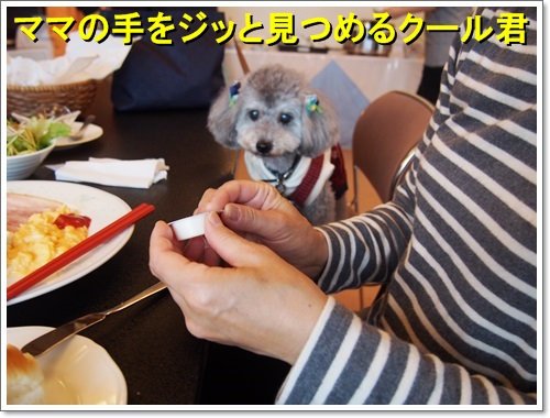 20141109_226.jpg
