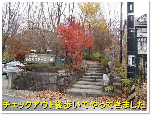 20141109_264.jpg