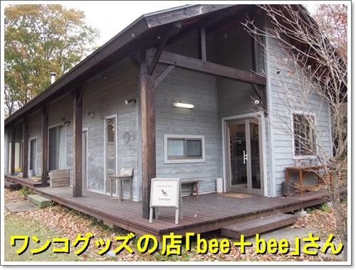 20141109_305.jpg