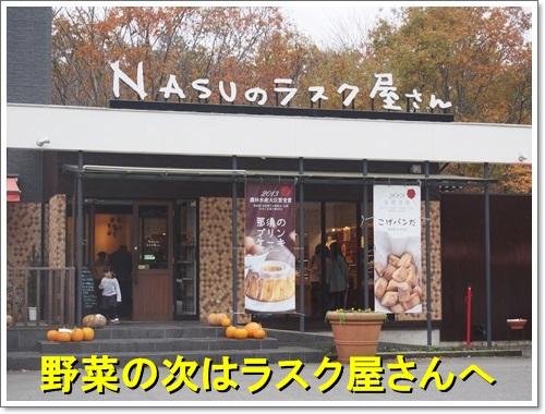 20141109_310.jpg