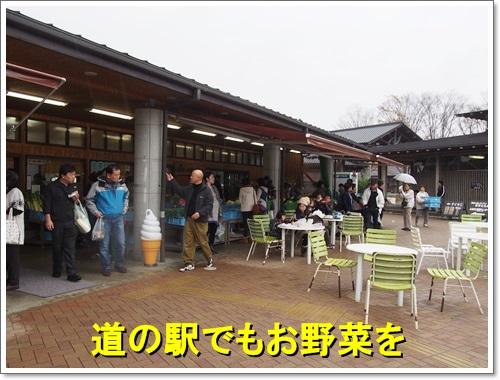 20141109_313.jpg