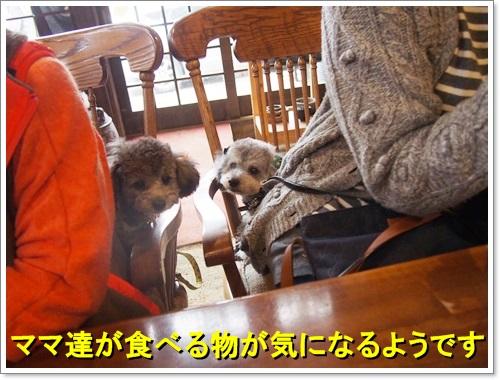 20141109_317.jpg