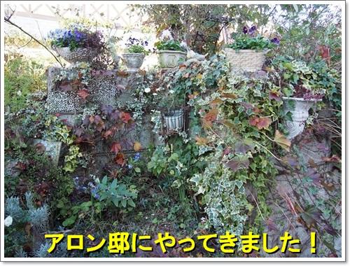 20141119_024.jpg