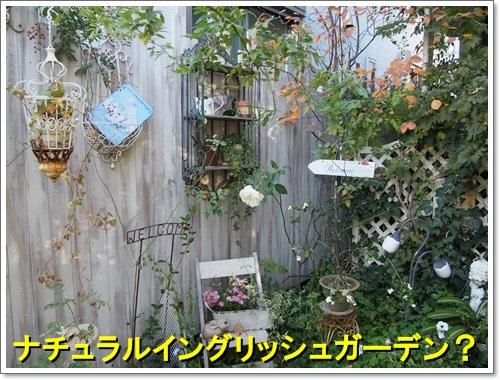 20141119_031.jpg