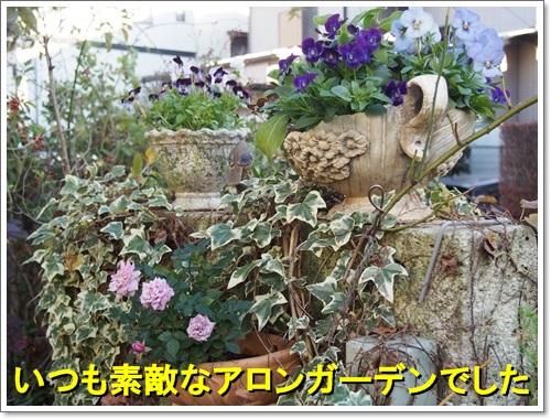 20141119_044.jpg