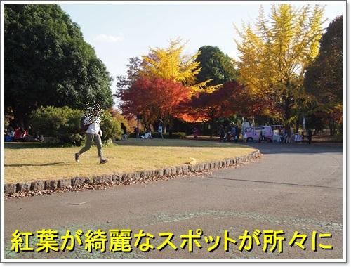 20141123_025.jpg
