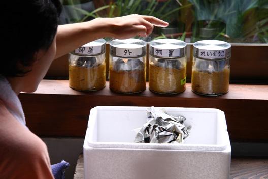 村上市 塩谷 野澤食品工業 夏休み自由研究