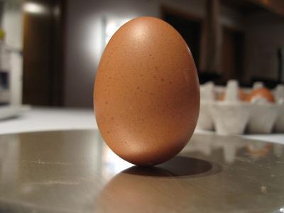 バランス 卵 シュール