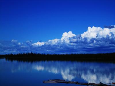 水平線 森 水 空 風景 青