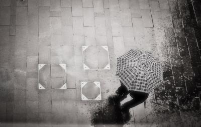 傘 見下ろす 雨 待ち