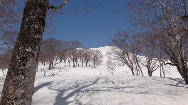 yudono2.jpg