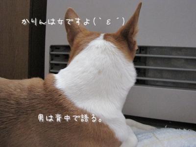 IMG_9191.jpg