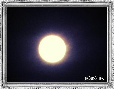 1555220-1.jpg